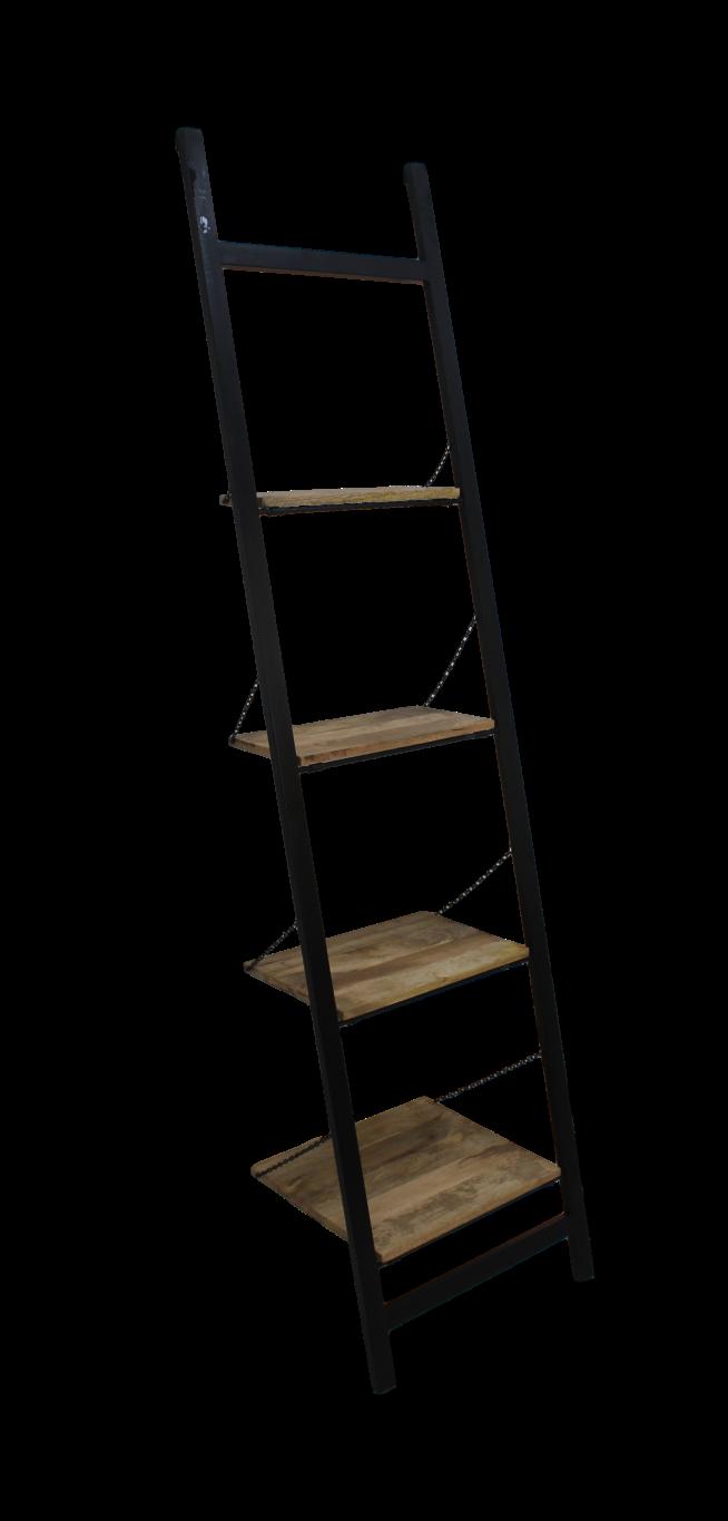 Decoratieve Ladder Mangohout Ijzer Powdercoated Black West Friese Beurs